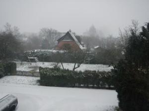 Schneesturmgewittergraupel 2